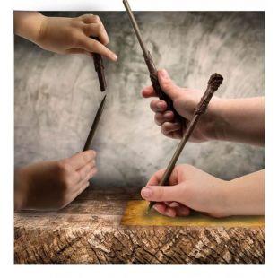 Bolígrafo varita de Harry Potter