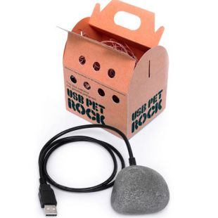 Pet Rock, Mascota Piedra con cable USB