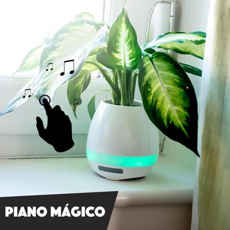 Maceta piano musical