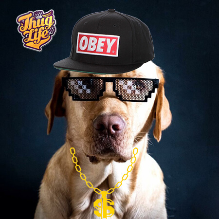 Gafas Thug Life - Deal with it